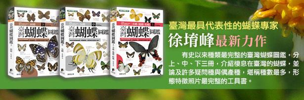 pub-butterfly1-3.jpg